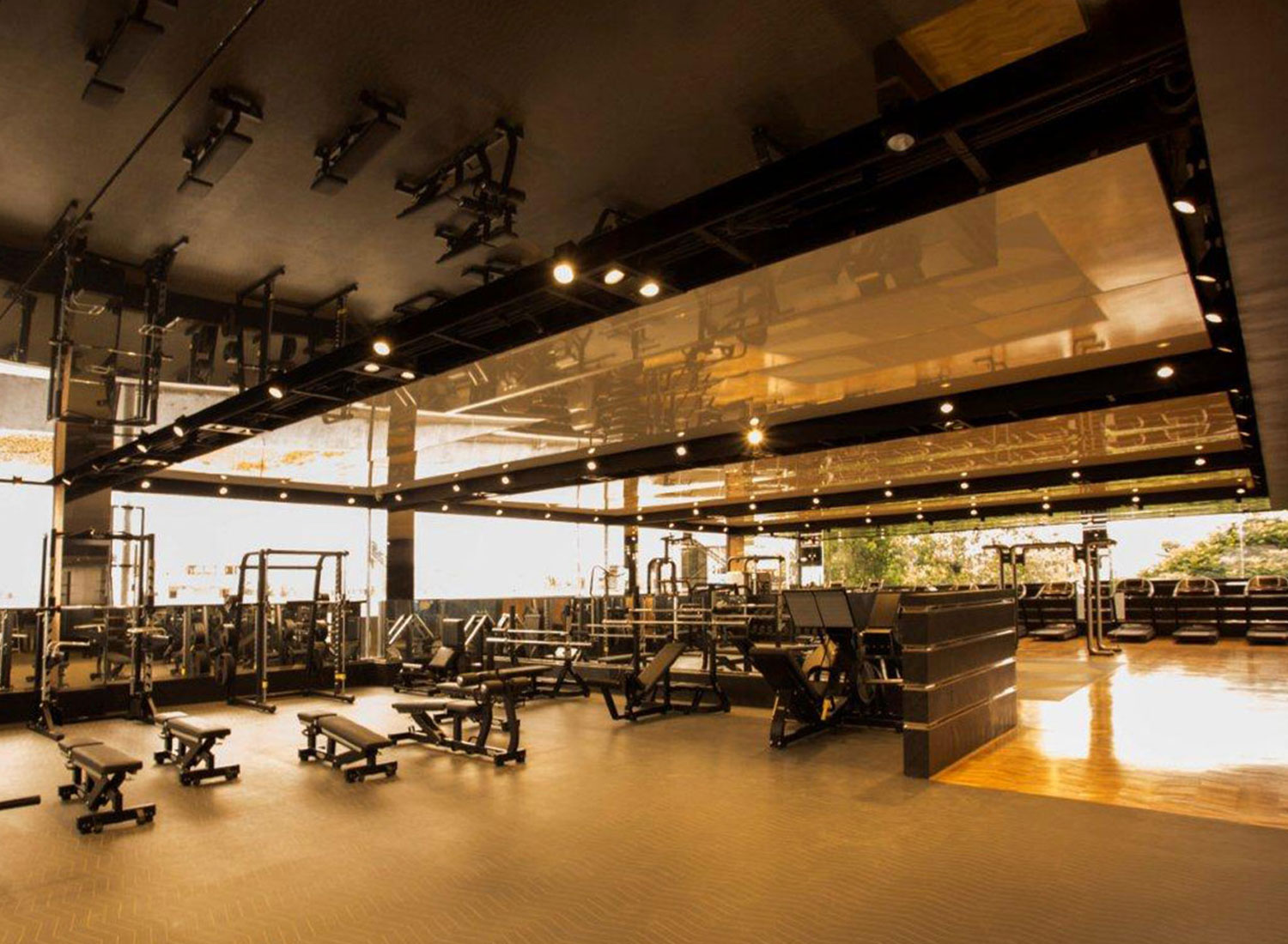 Haute Fitness - Stretch Ceiling Lacquer in Gym - Gym - Bangalore